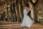 Brautshooting am Strand Nienhagen Fotografieren in Rostock