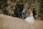 Titelbild Suche Hochzeitsfotograf